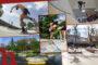 Skateparks in Wien: Die 10 besten Spots der Stadt